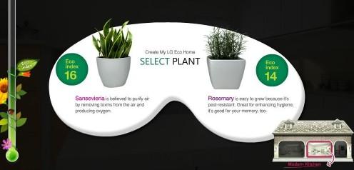 Wybór rośliny do kuchni